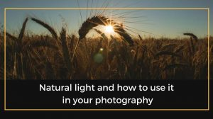 Natural light in photography